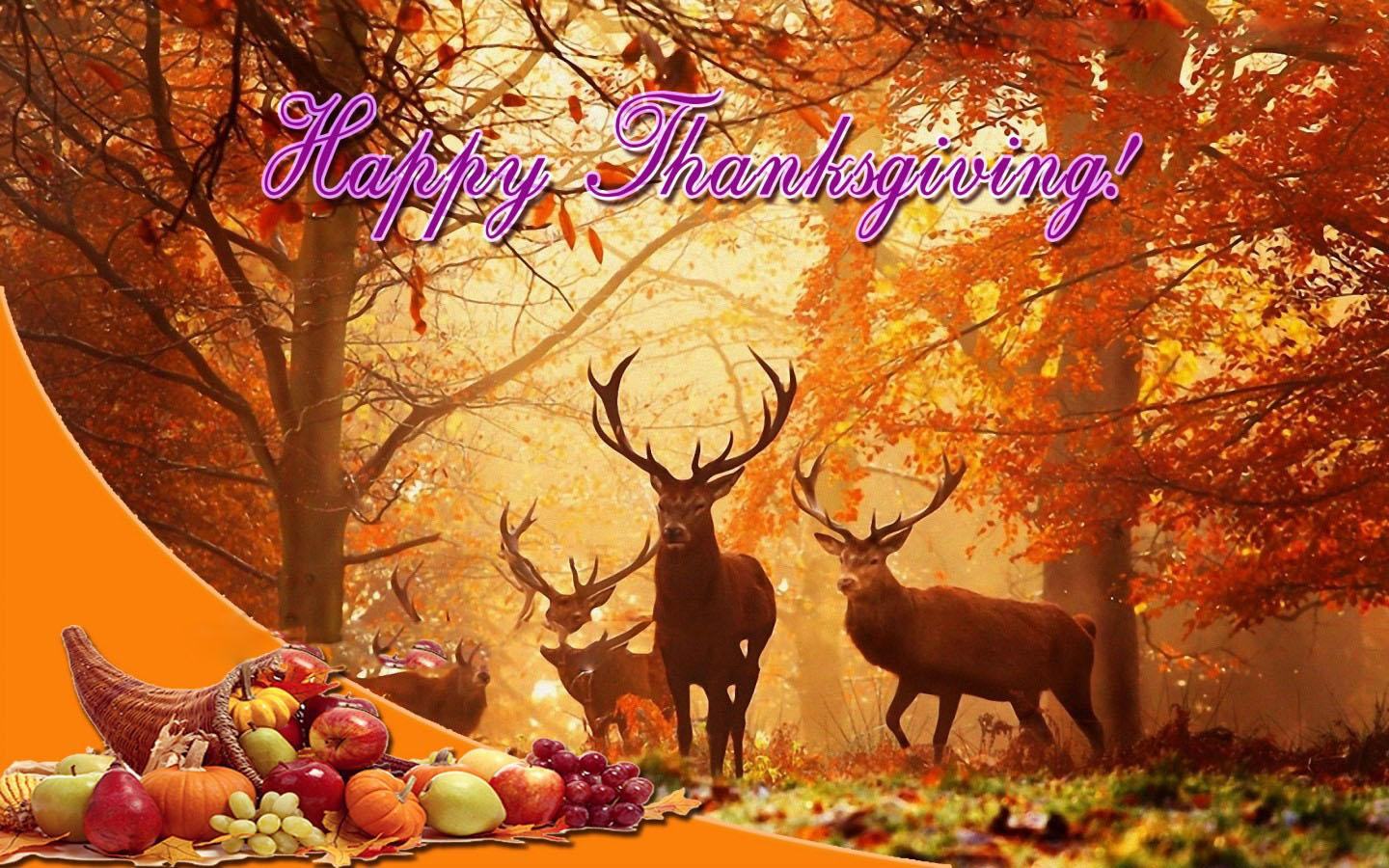 Thanksgiving Wallpapers Group (84+)