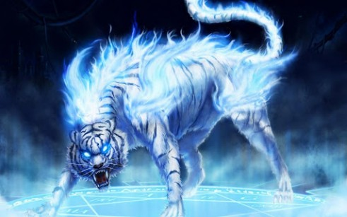 Cool Tiger Wallpapers – Free wallpaper download
