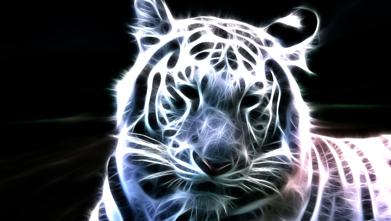 Cool Tiger Backgrounds Free Wallpaper Download
