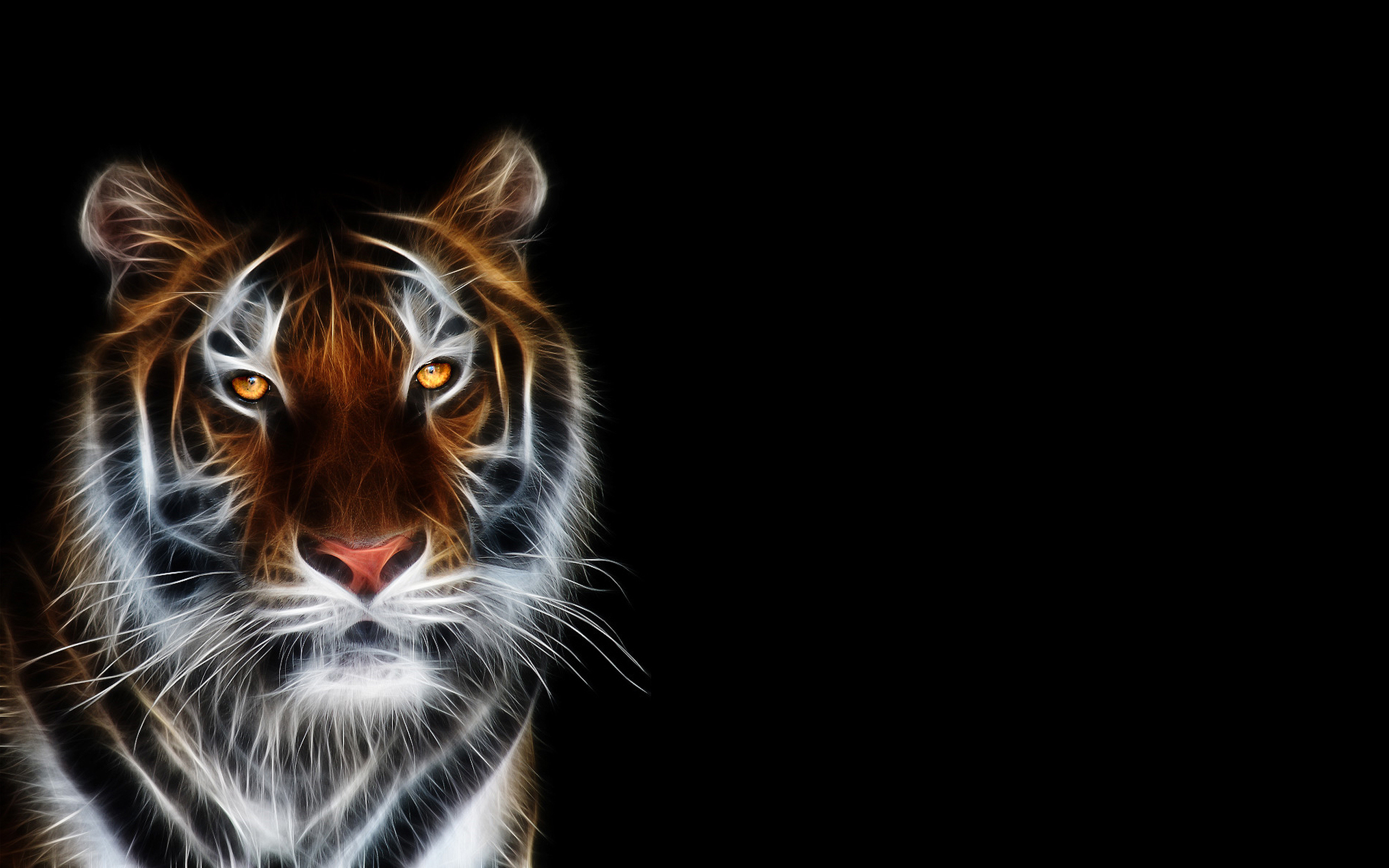 Tiger Backgrounds Pictures Group 70