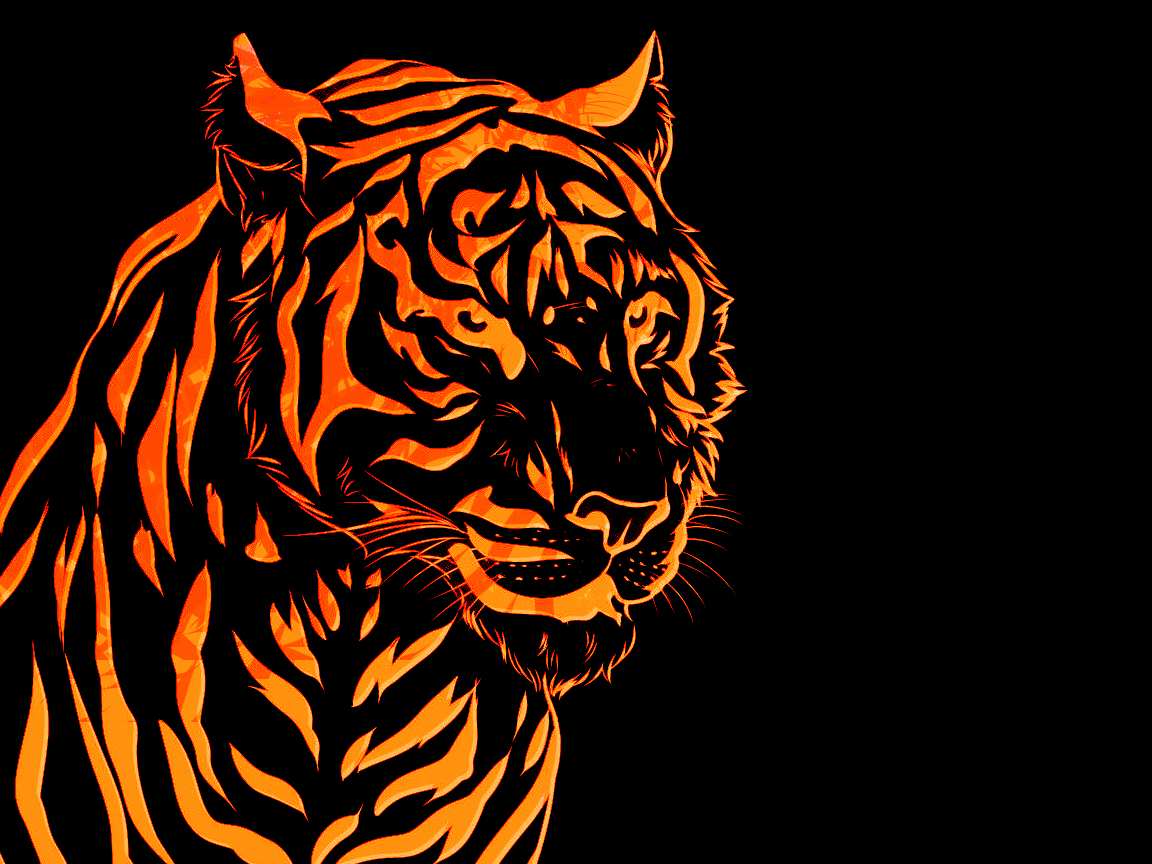 Collection of Cool Tiger Backgrounds on HDWallpapers