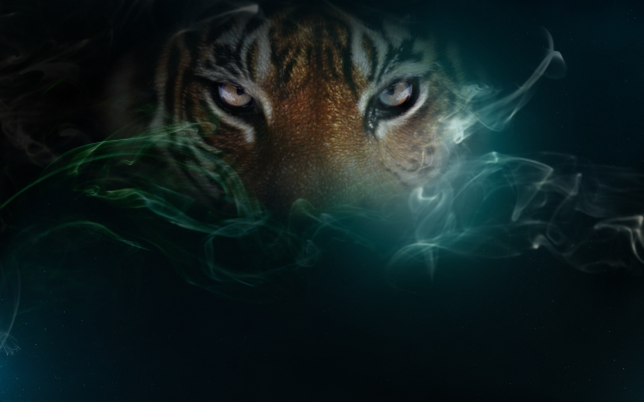 Cool Tiger Wallpapers - Wallpapers Browse