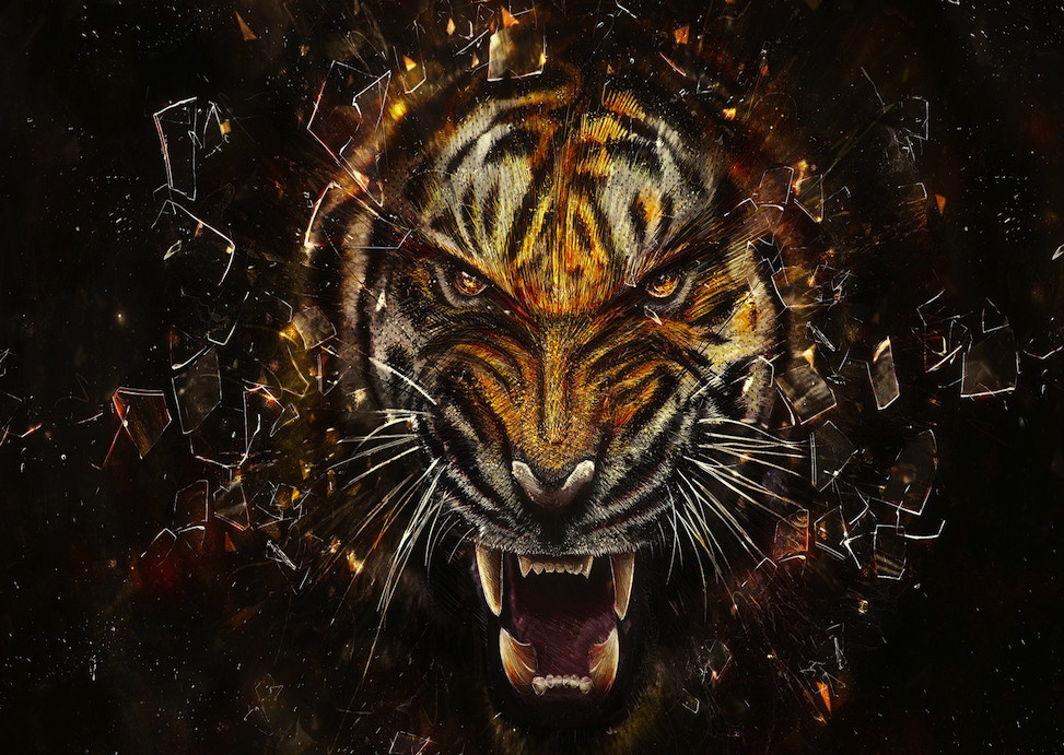Cool Tiger Wallpaper Page 1