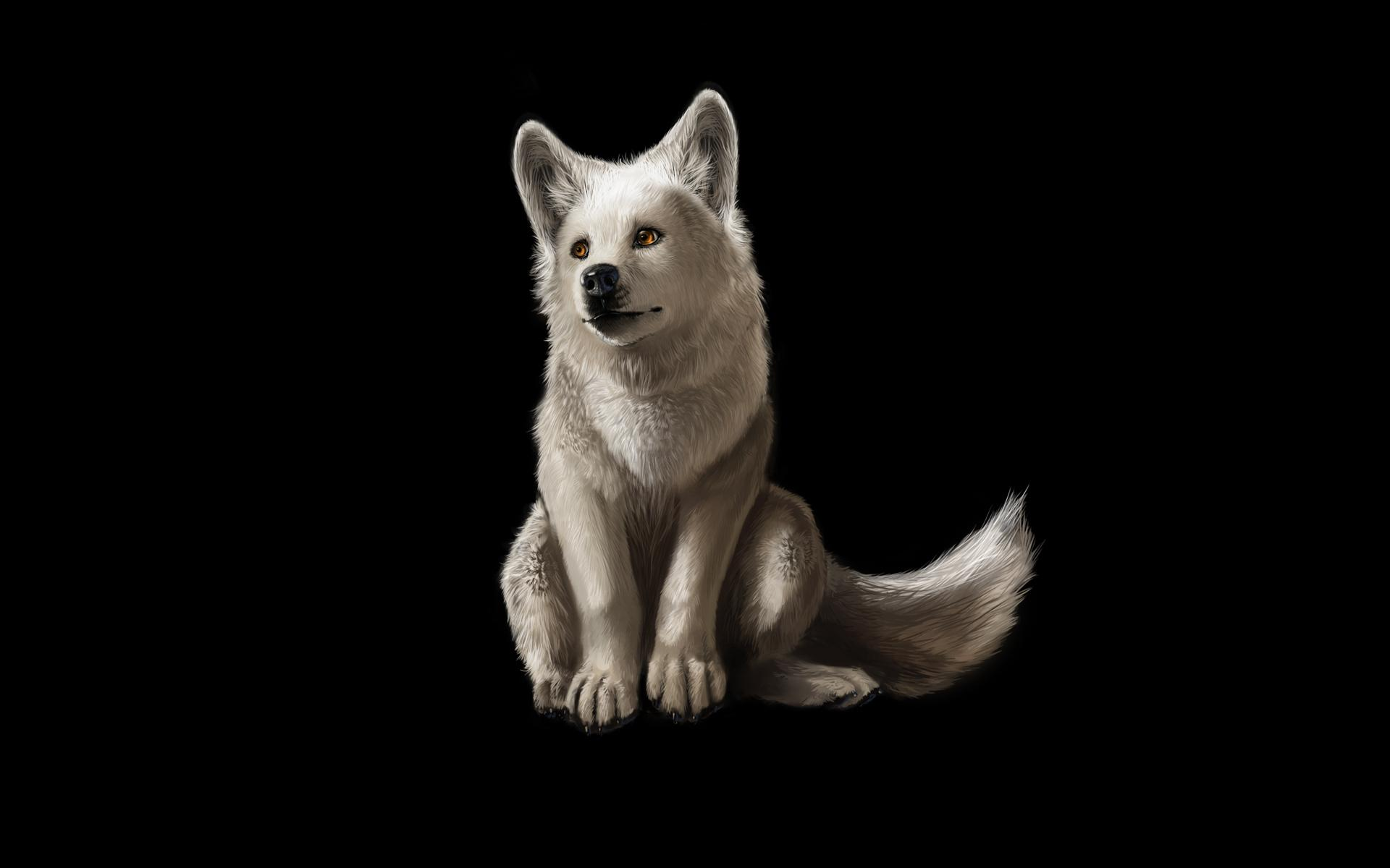 White Wolves Wallpapers Group (72+)