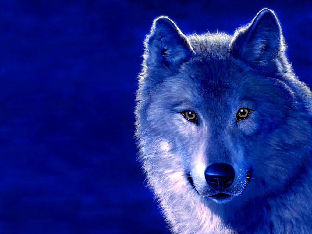 Cool Wolf Wallpapers - WallpaperSafari