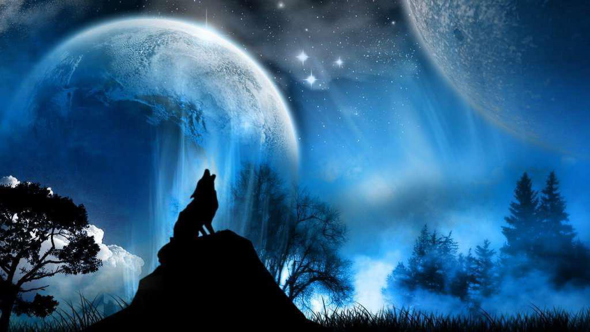 Collection of Cool Wolf Backgrounds on HDWallpapers