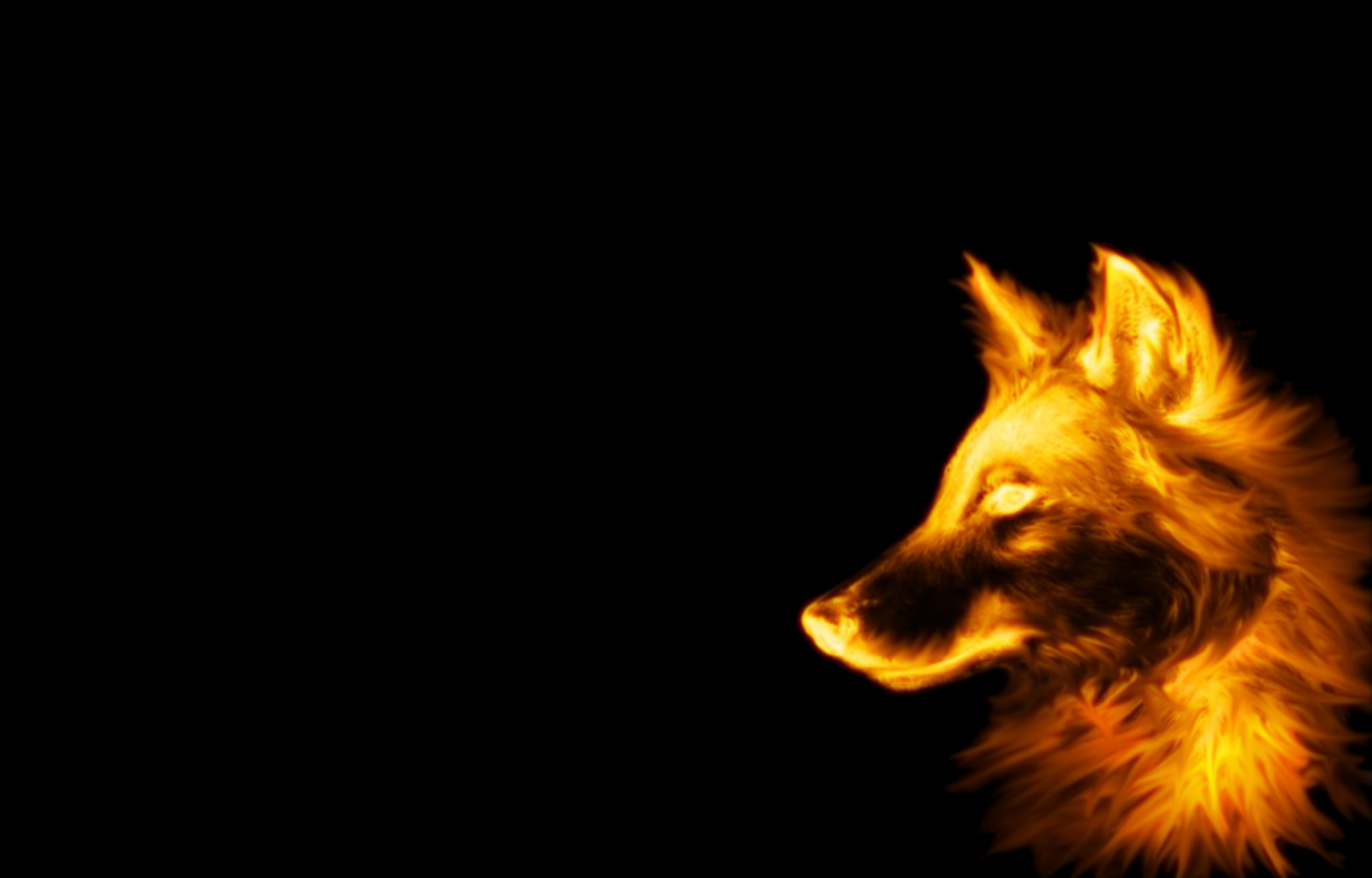 Wolf Backgrounds - Wallpaper Cave