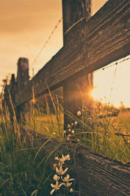 1000+ ideas about Country Backgrounds on Pinterest | Country