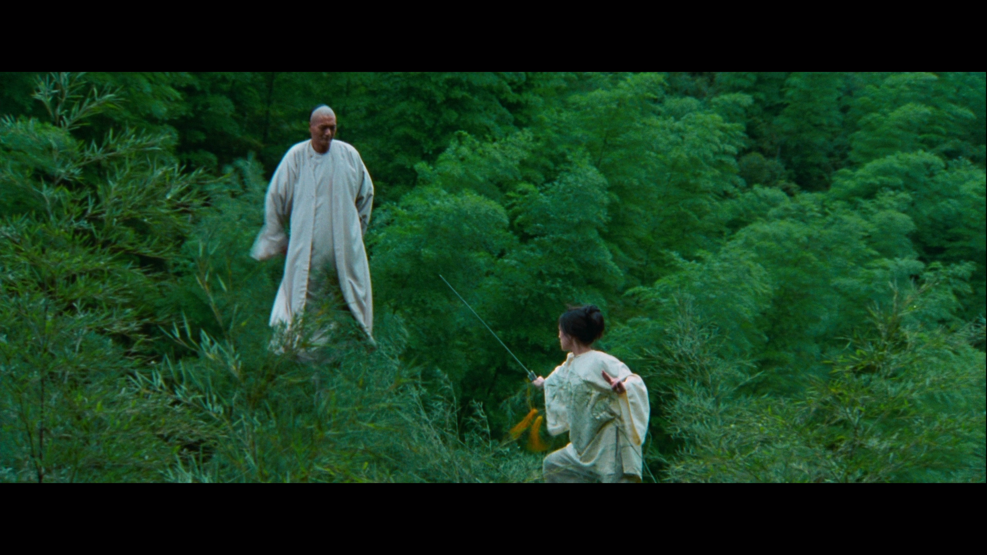 10 Best images about Crouching Tiger, Hidden Dragon on Pinterest