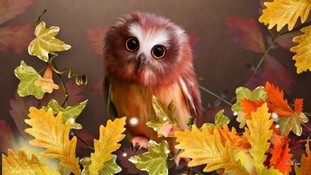 Cute Autumn Owl - Birds & Animals Background Wallpapers on Desktop