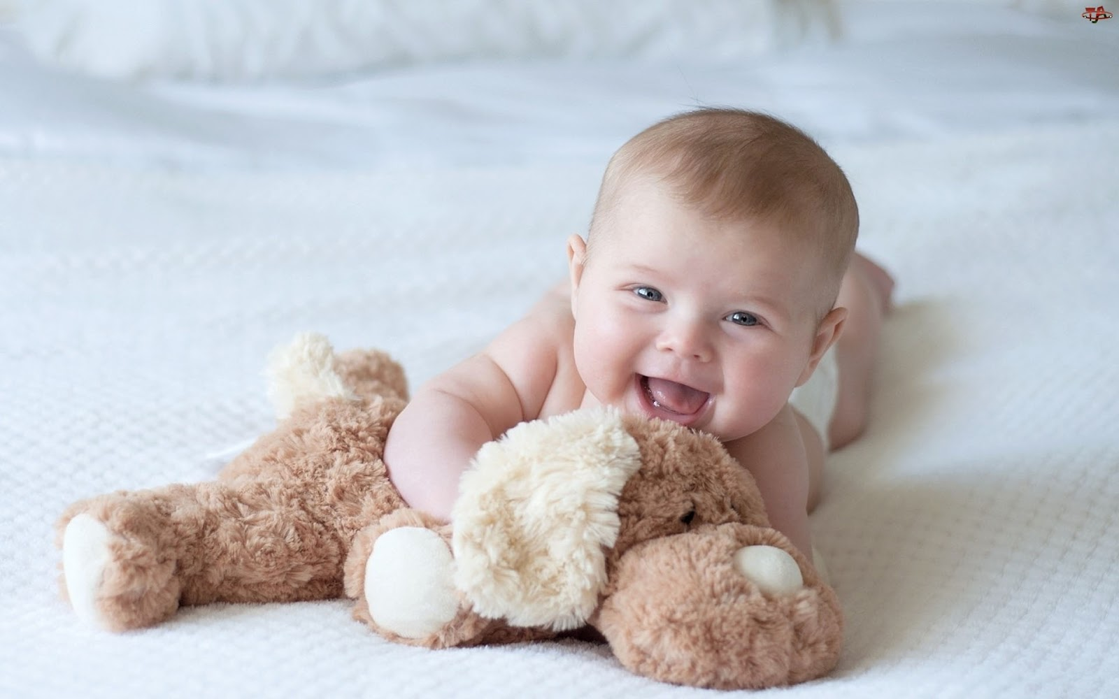 cute baby boy pictures - sf wallpaper