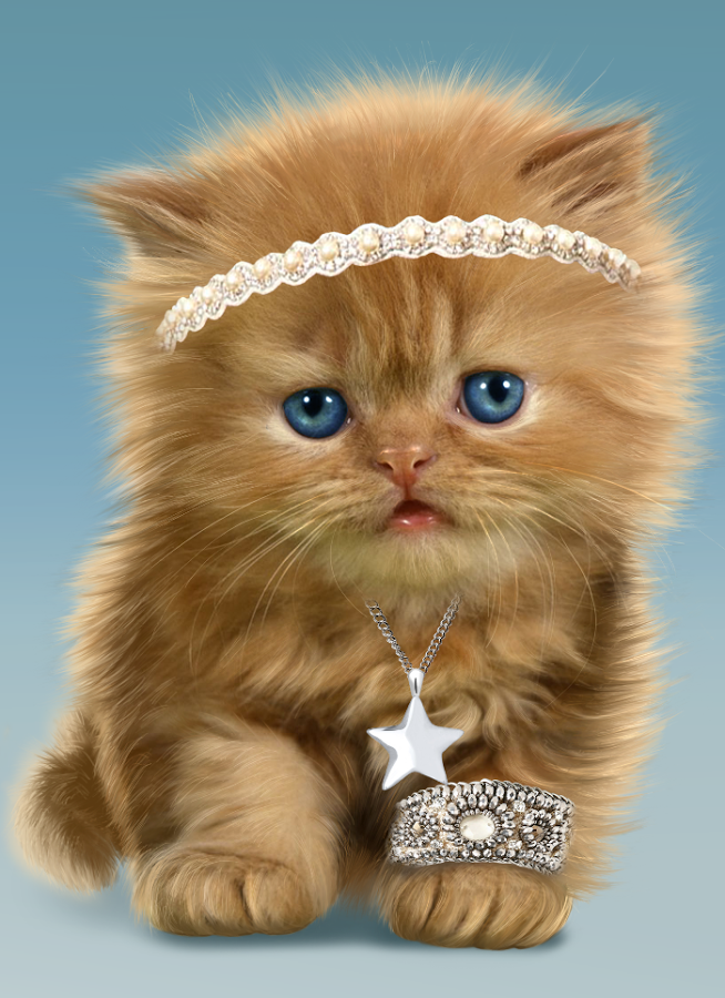 Baby Cat, Cute Live Wallpaper - Android Apps on Google Play