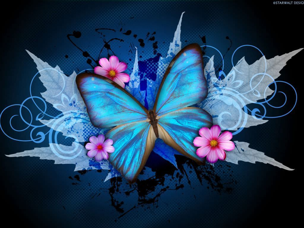 22+ Butterfly Wallpapers, Backgrounds, Images | FreeCreatives