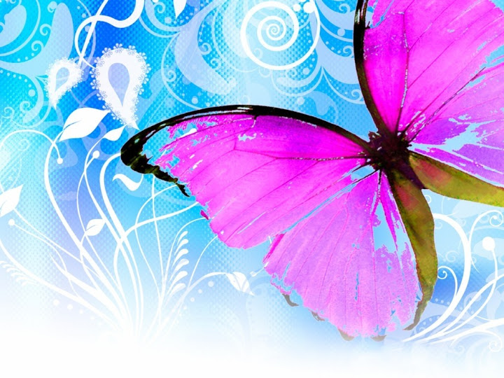News Butterfly: Cute Butterfly Wallpaper