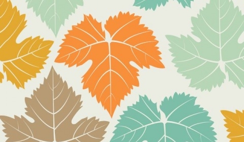 Collection of Cute Fall Wallpaper Backgrounds on HDWallpapers