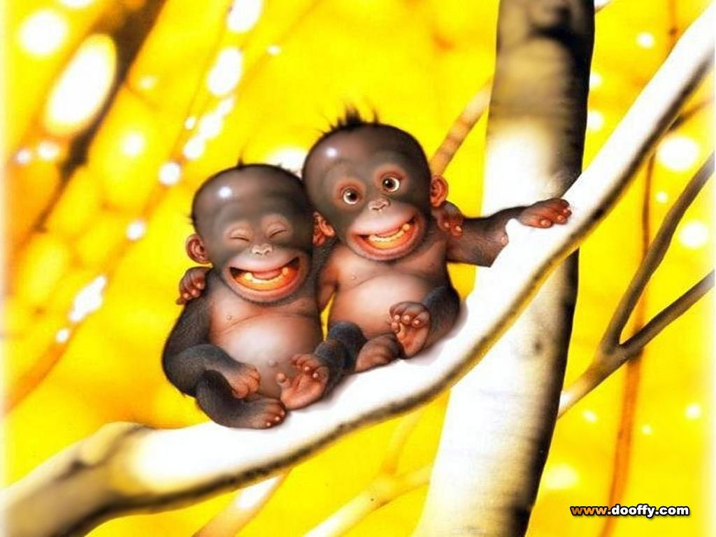 Cute Monkey Wallpapers - Wallpaper Cave