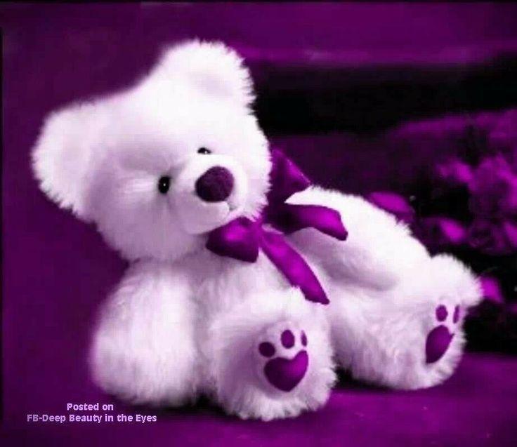 10+ images about Teddy Bears on Pinterest   Steiff teddy bear