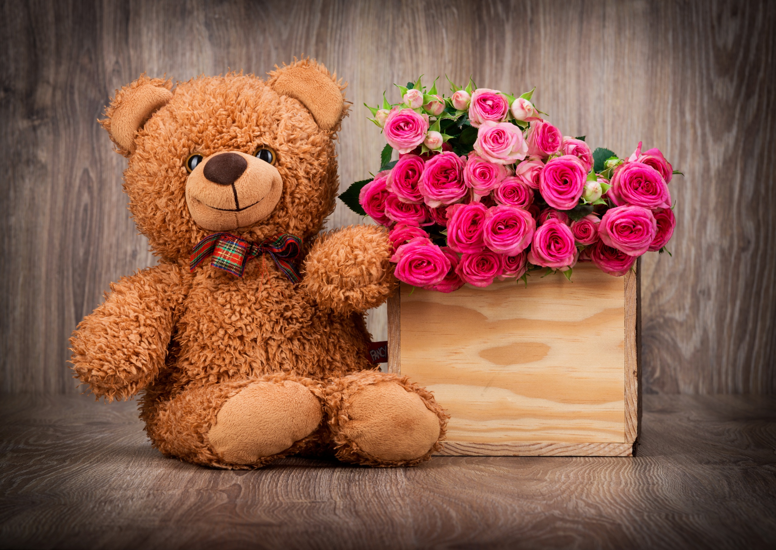 Cute Teddy Bear Wallpaper with Pink Roses in Box | HD Wallpapers