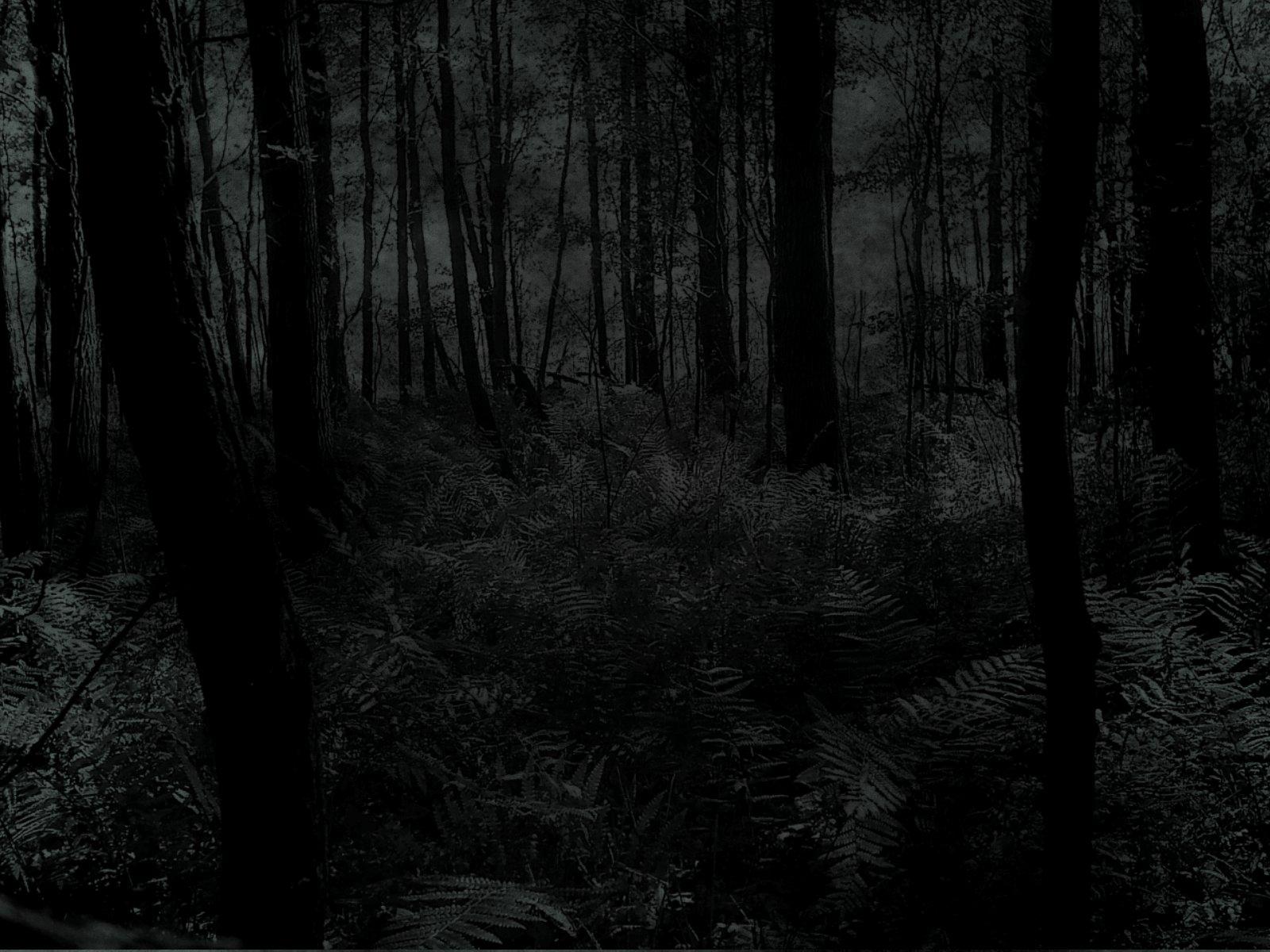 dark image #24