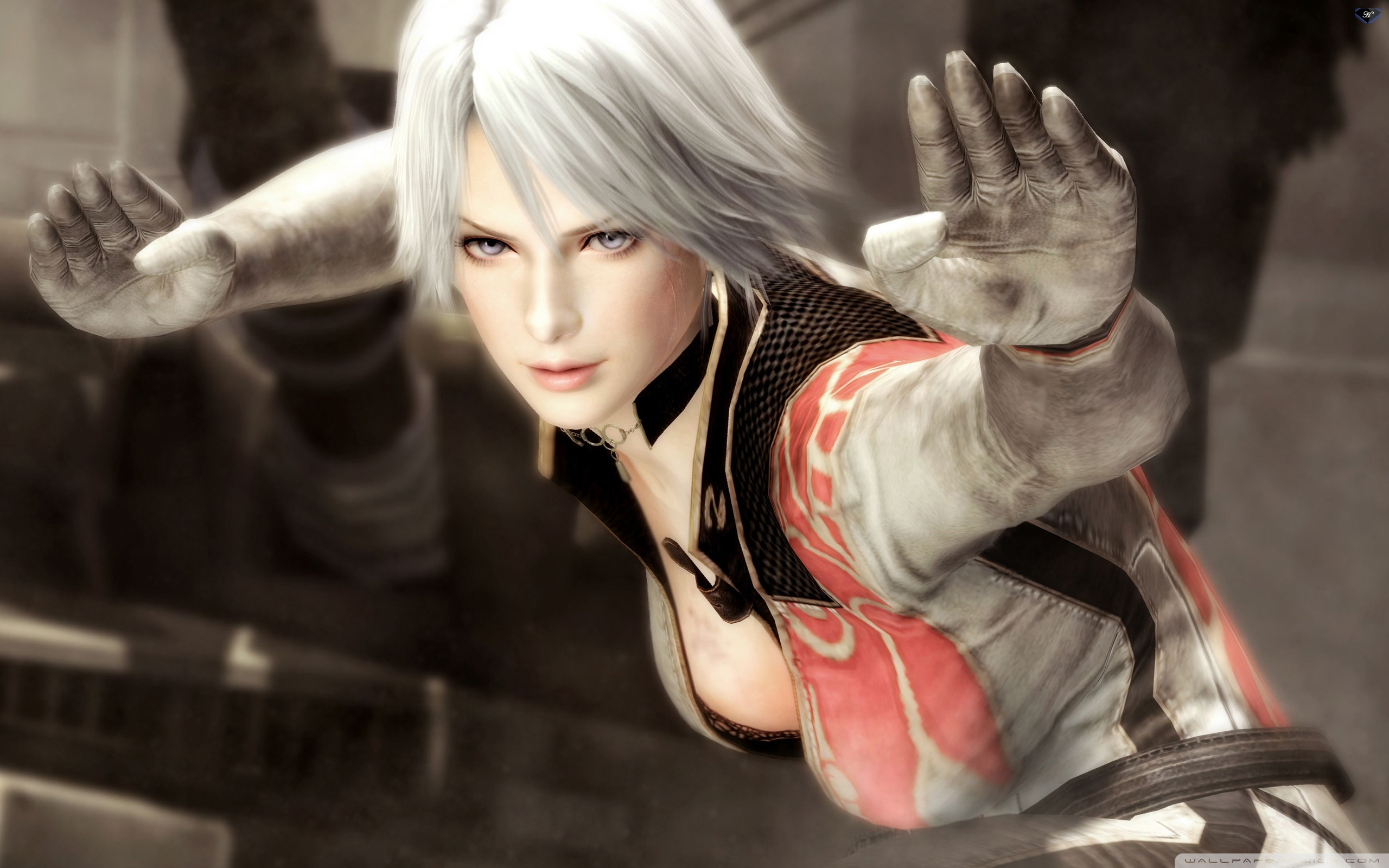 Dead or Alive 5 HD desktop wallpaper : High Definition