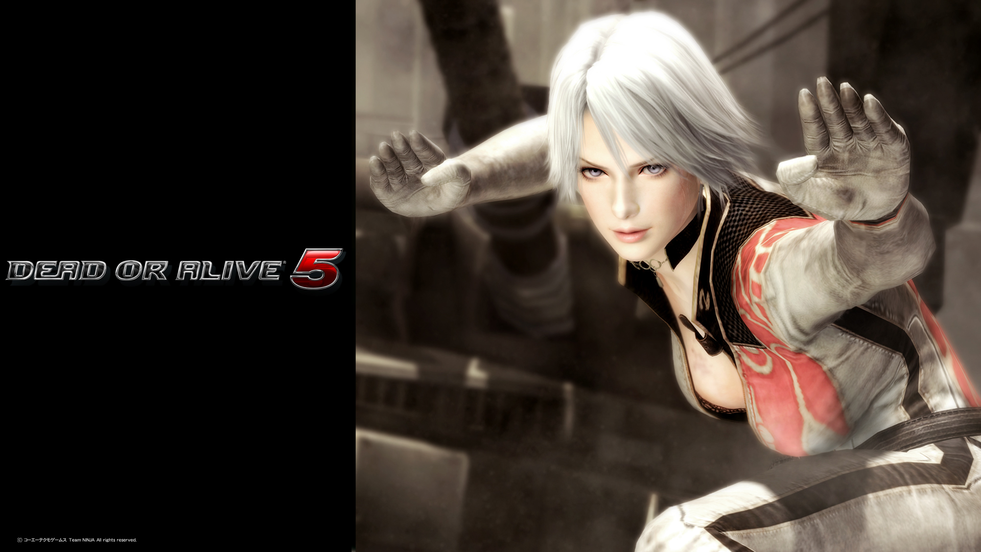 Dead or Alive 5 Wallpaper (HD)