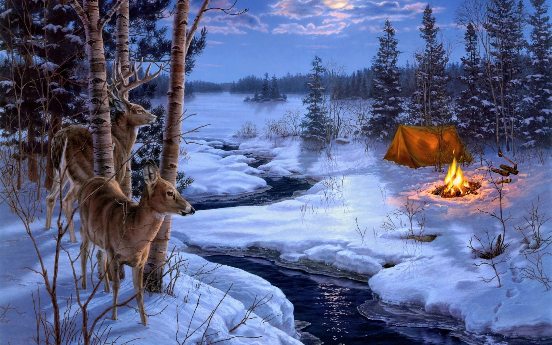 462 Deer HD Wallpapers | Backgrounds - Wallpaper Abyss