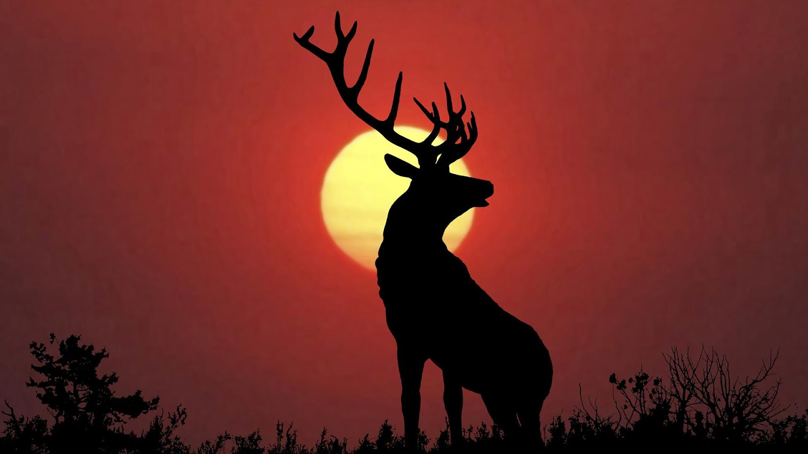 Deer Wallpapers - Android Apps on Google Play