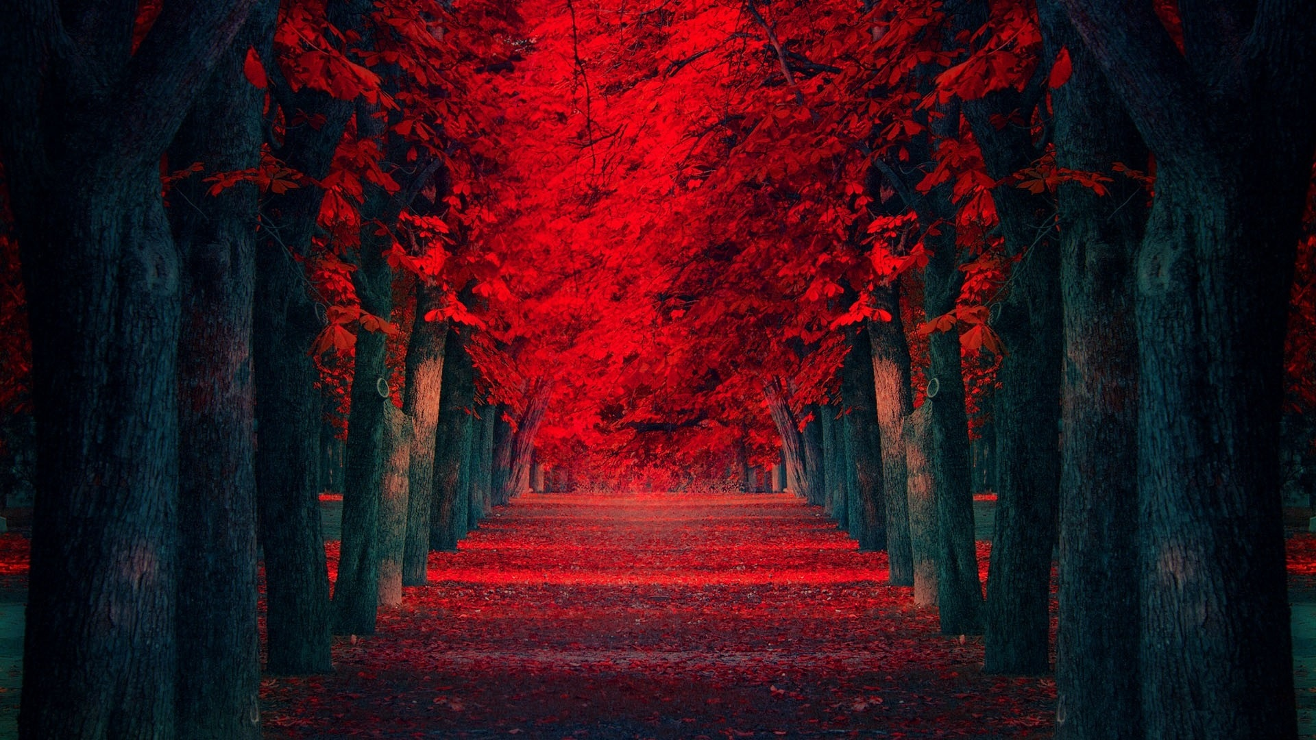 Collection of Desktop Backgrounds Red on HDWallpapers