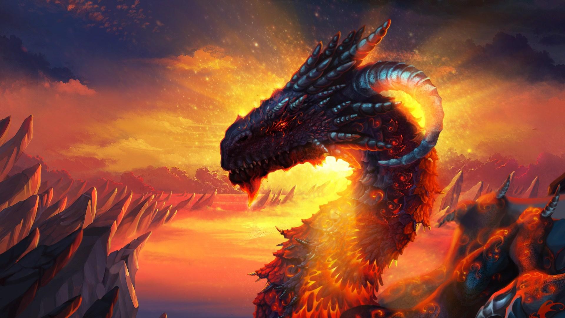 Fire Dragon Hd Wallpaper Sf Wallpaper