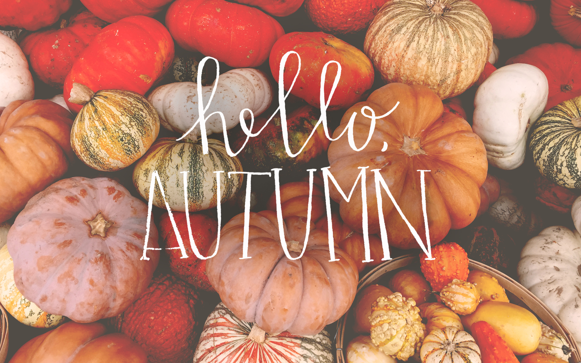 1000+ ideas about Fall Desktop Backgrounds on Pinterest | Fall