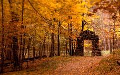 Autumn Wallpapers | Free Autumn Desktop Wallpaper Desktop