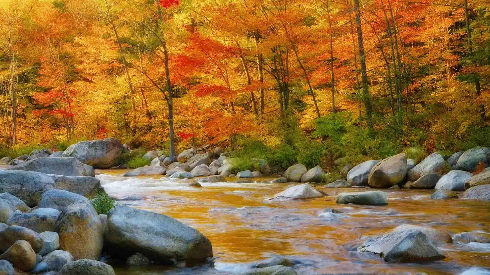 Desktop Wallpaper For Fall Season