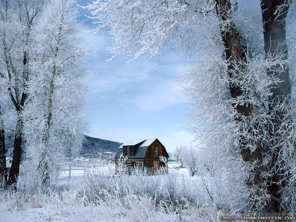 Desktop Wallpaper Winter Scenes Sf Wallpaper