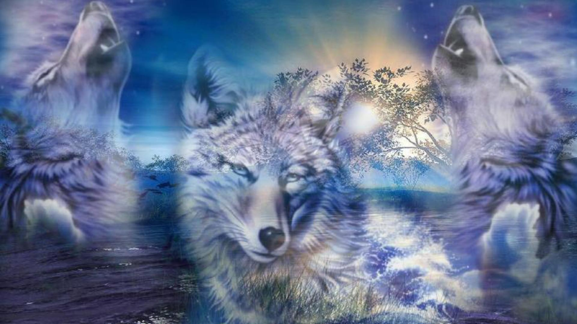 Wolf Fantasy Wallpapers Group 82