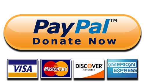 PayPal Donate Button PNG Transparent Images | PNG All