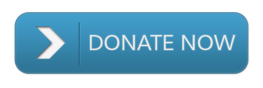 Collection of Donate Button Image on HDWallpapers