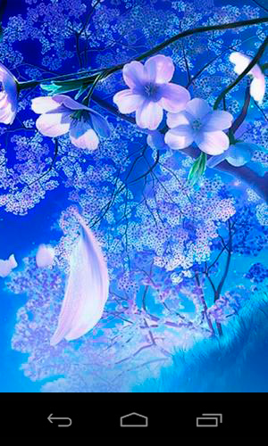 3D sakura magic live wallpaper for Android  3D sakura magic free