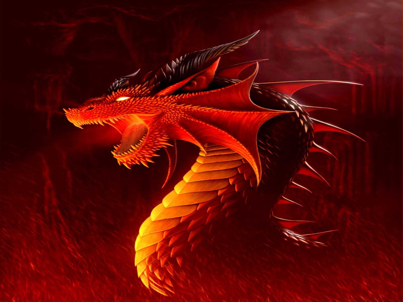 1697 Dragon HD Wallpapers | Backgrounds - Wallpaper Abyss