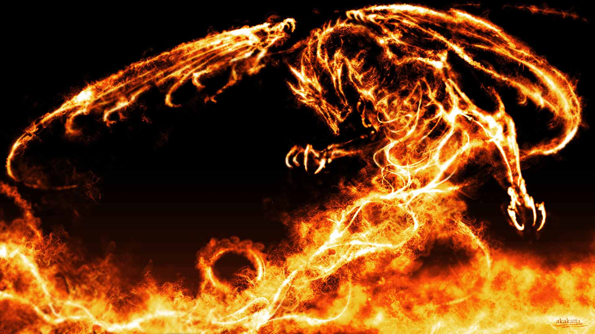 Collection of Dragon Hd Wallpaper on HDWallpapers