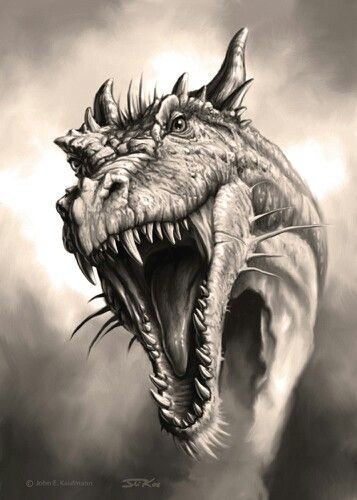 1000+ ideas about Dragons on Pinterest | Dragon art, Mythical