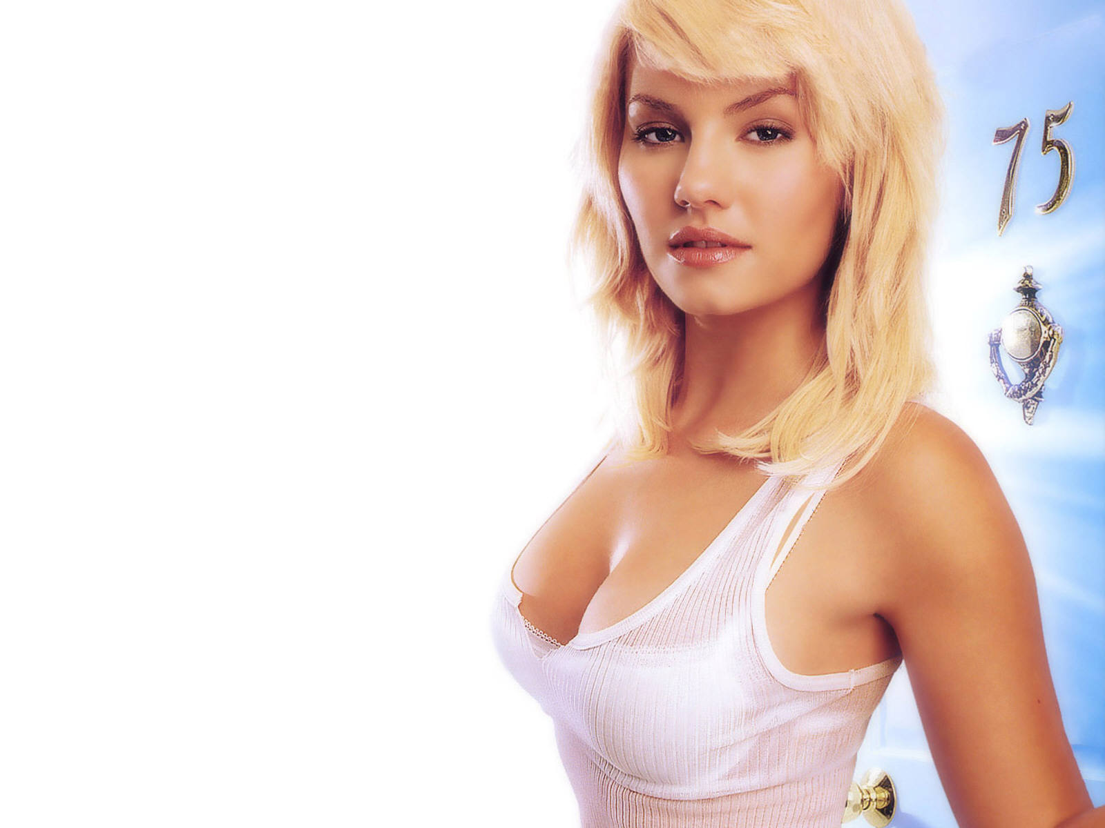 Hot Bio Celebrity Pictures: Elisha Cuthbert Hot HD Wallpapers