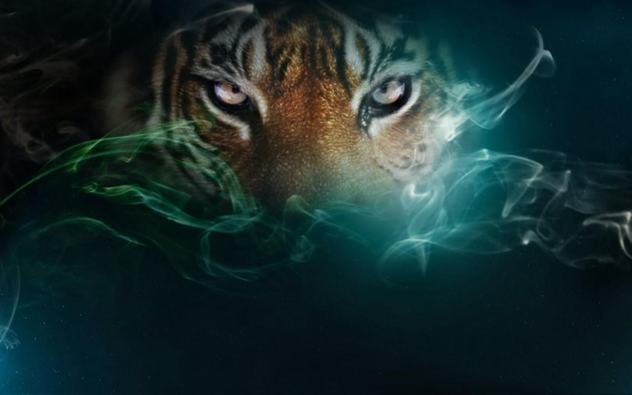 tiger eye wallpaper #4