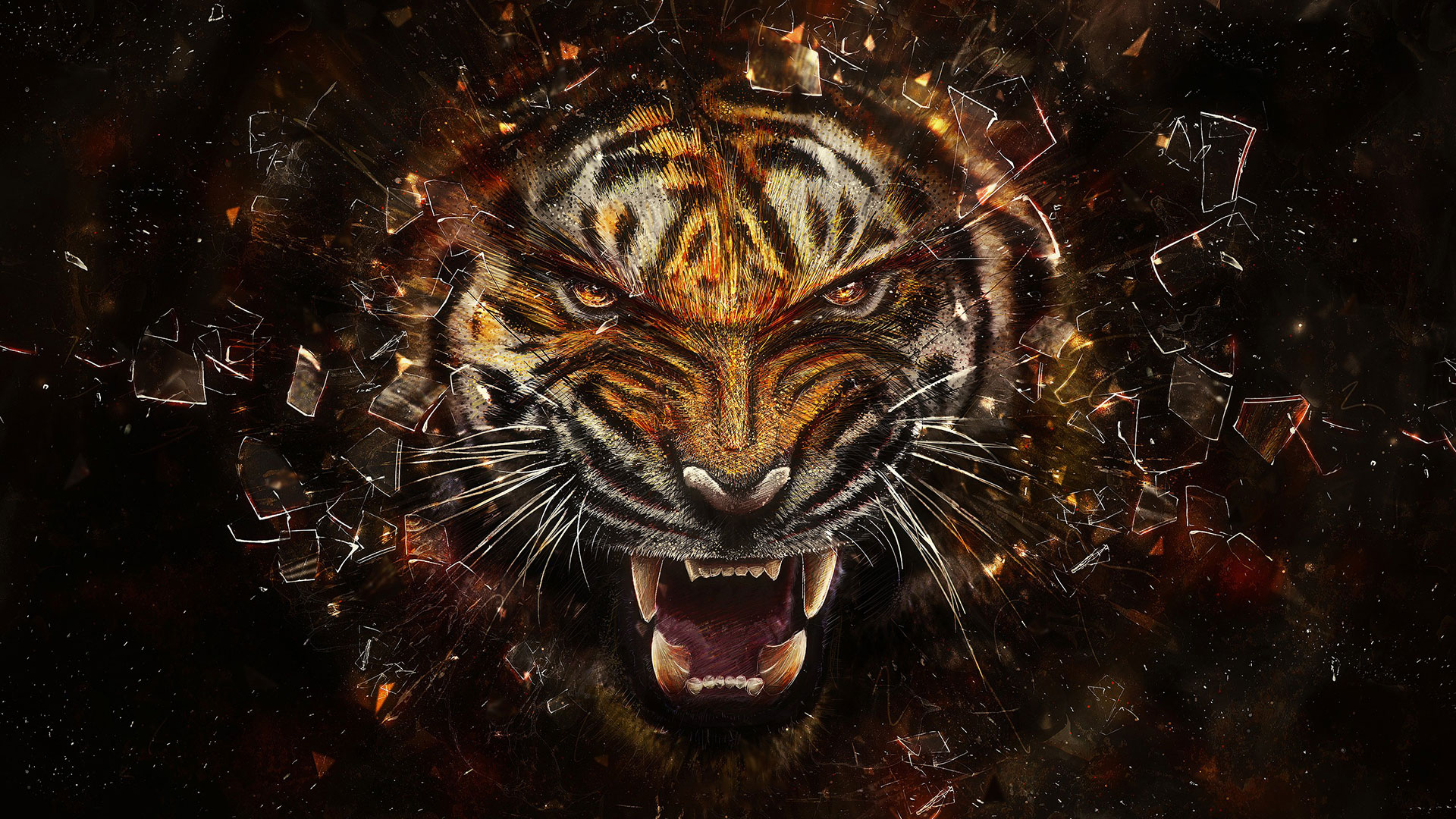 Eye of the Tiger HD Wallpaper by HD Wallpapers Daily