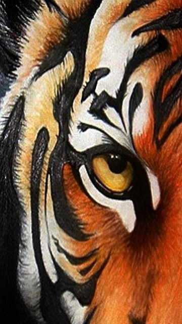tiger eye wallpaper #5