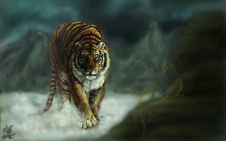Eye Of The Tiger - Cats & Animals Background Wallpapers on Desktop