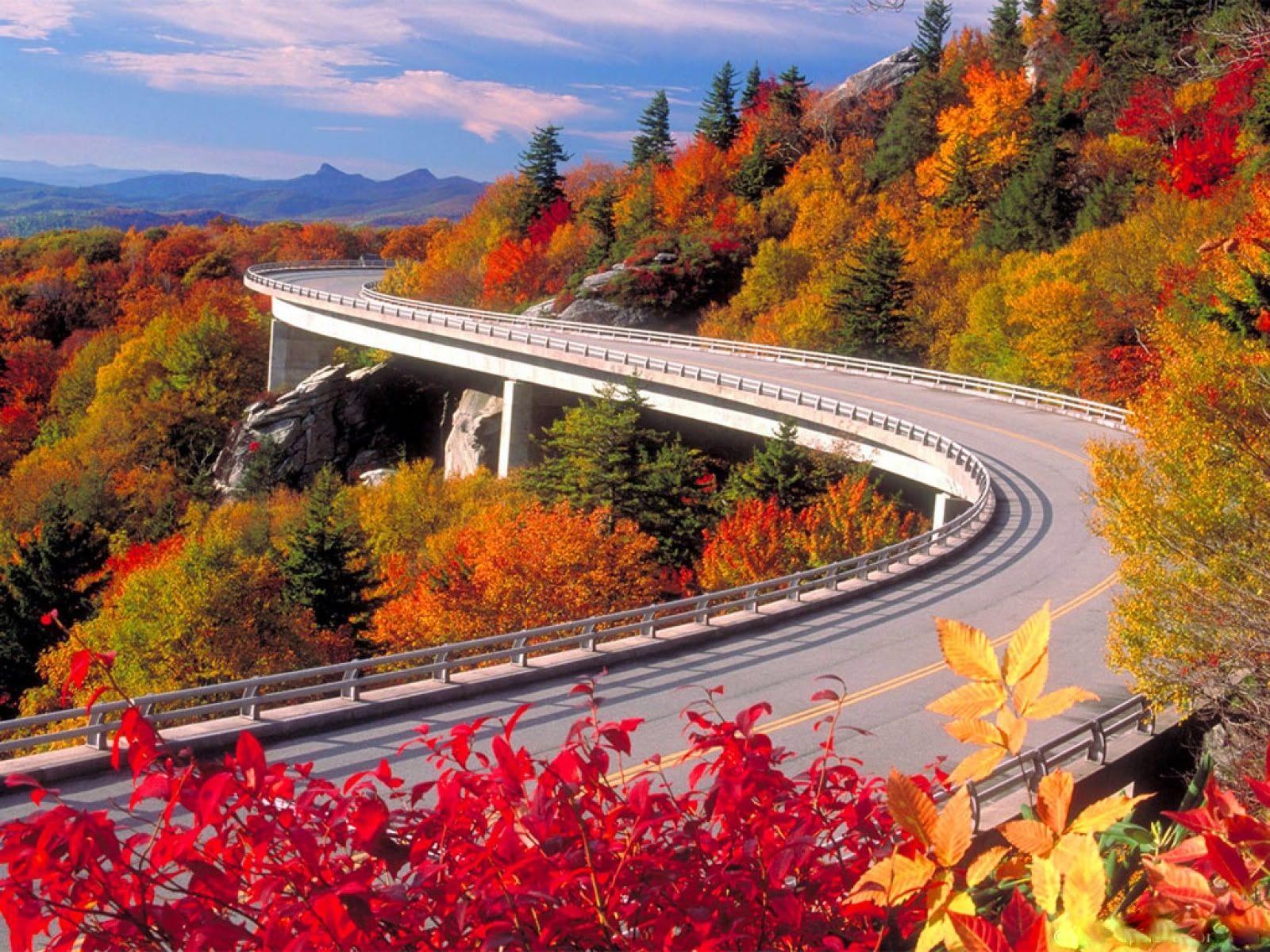 Fall Foliage Desktop Wallpaper Page 1