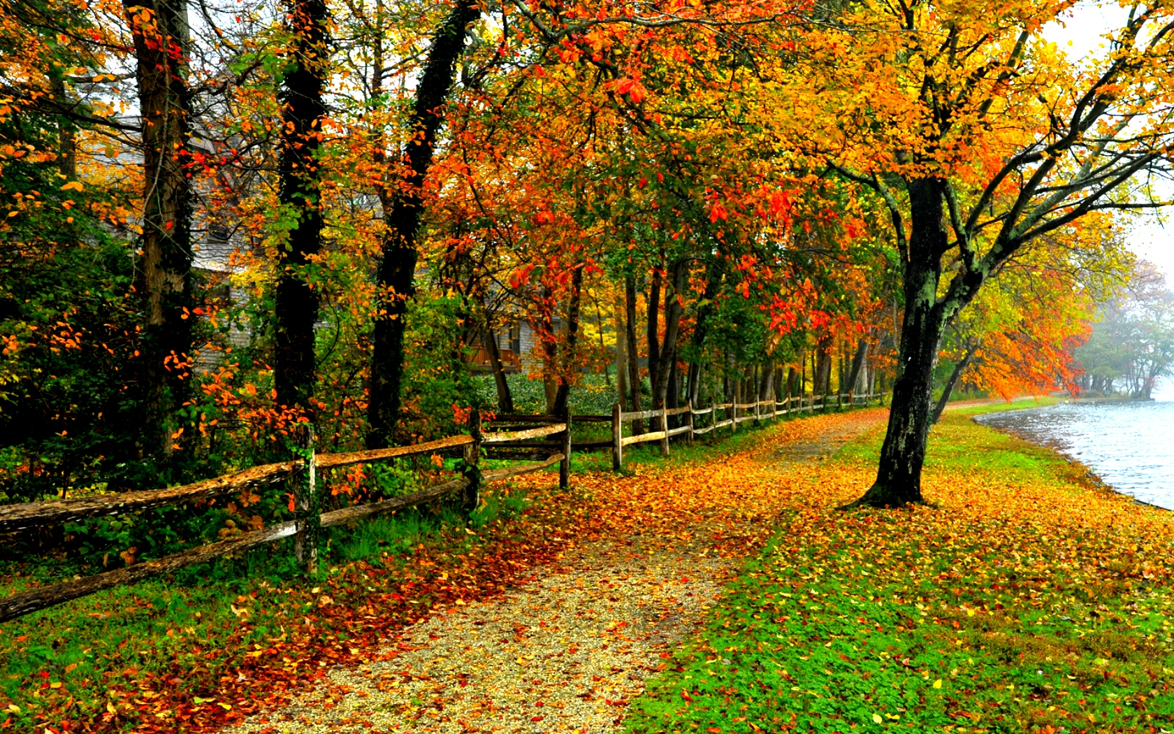 Fall Foliage Wallpapers Pack 732: Fall Foliage Desktop Wallpaper