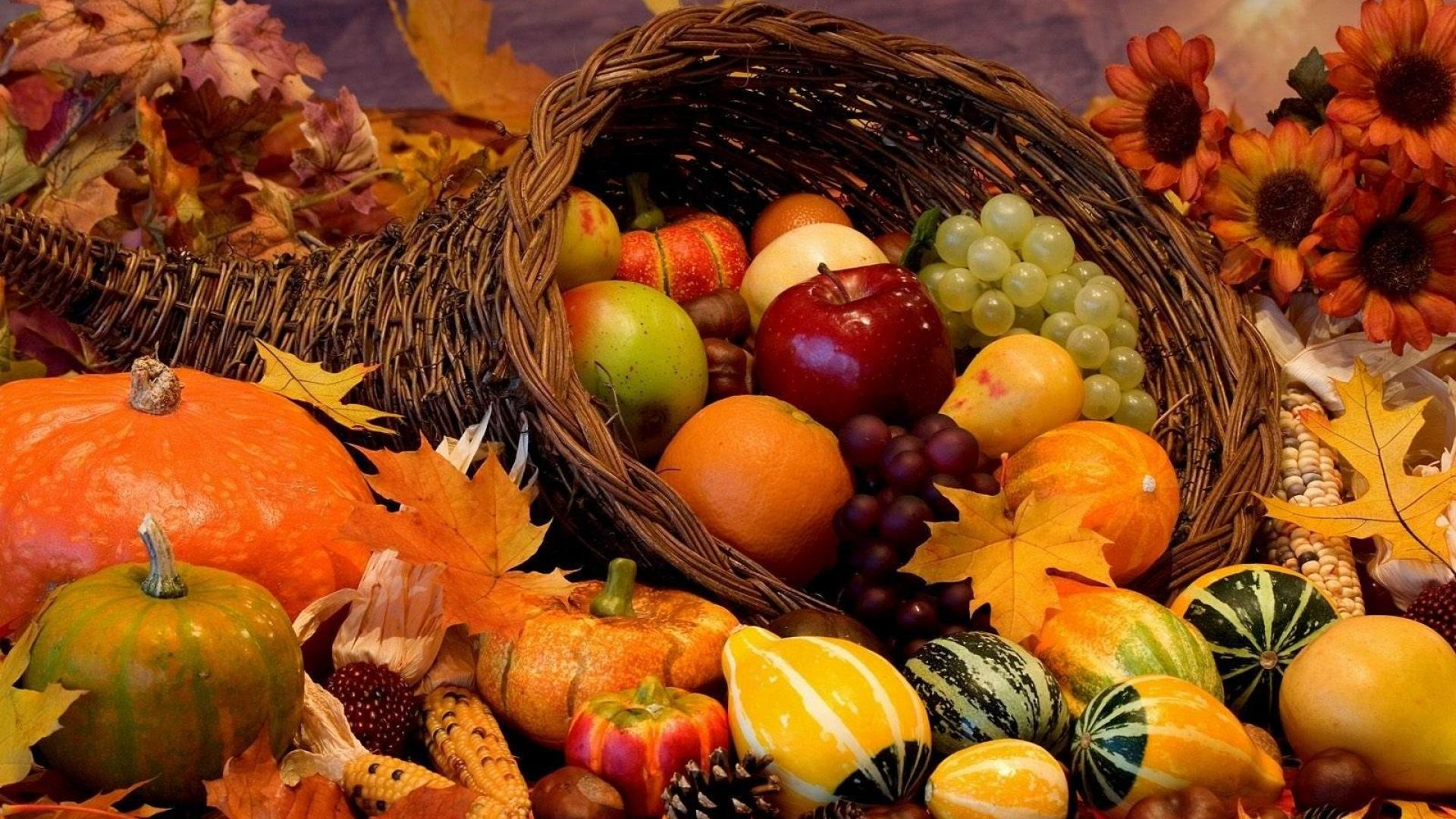 Autumn Harvest Wallpaper Widescreen - wallpaper