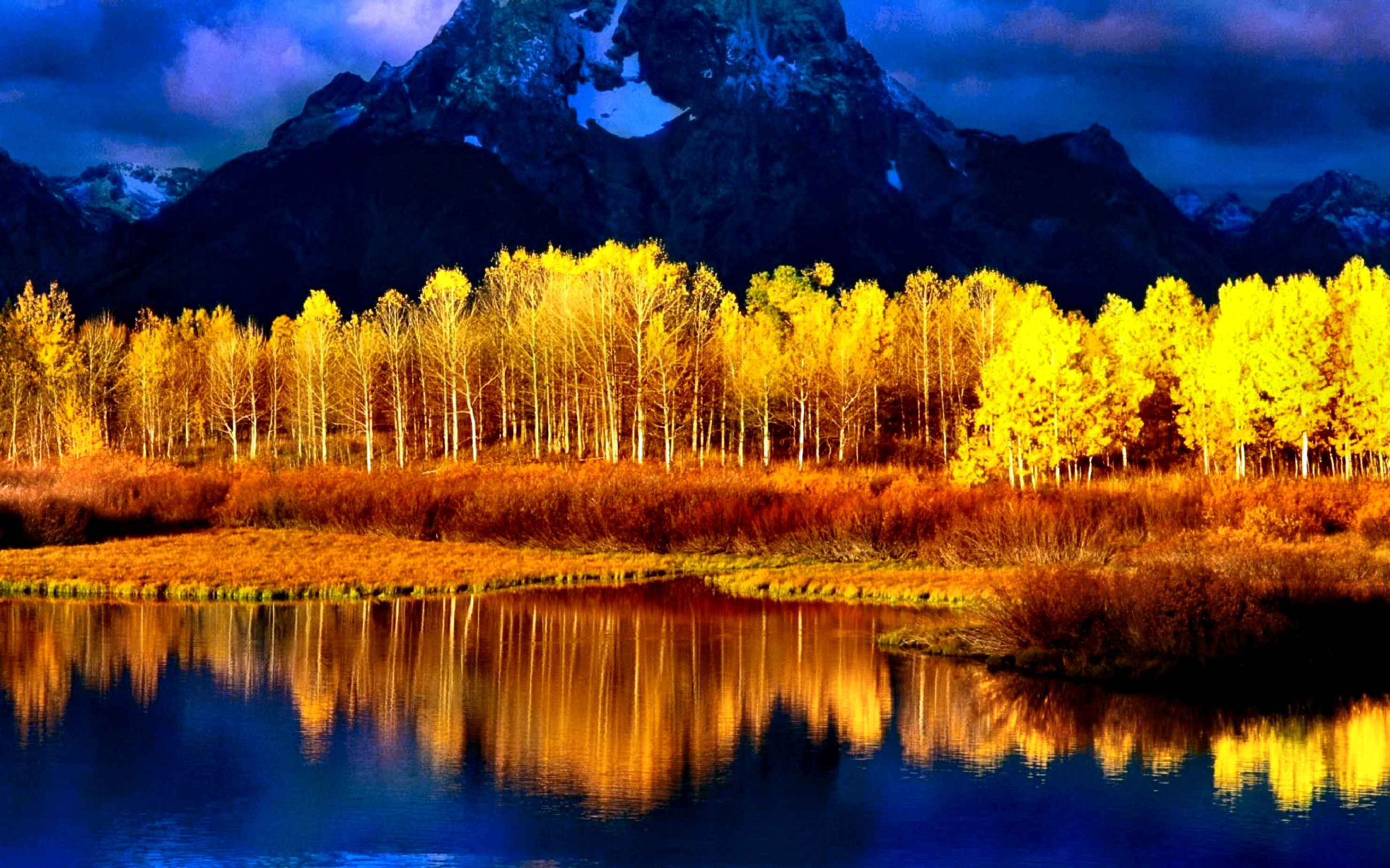 2595 Fall HD Wallpapers | Backgrounds - Wallpaper Abyss