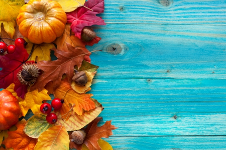 Image Gallery of Autumn Leaves And Pumpkins Wallpaper